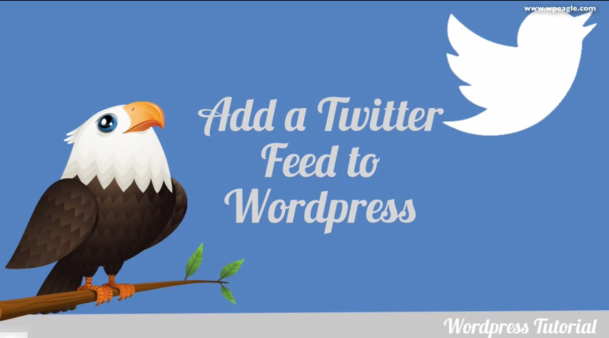 how to get a twitter feed on your website